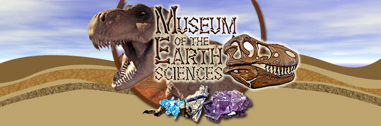 Museum of the Earth Sciences
